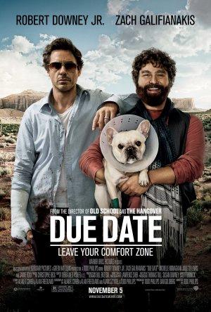 Due Date / დანიშნული ვადა (2010/ქართულად)